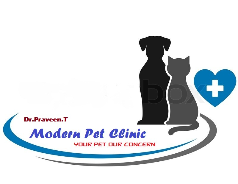 Modern Veterinary (Pet)  Clinic