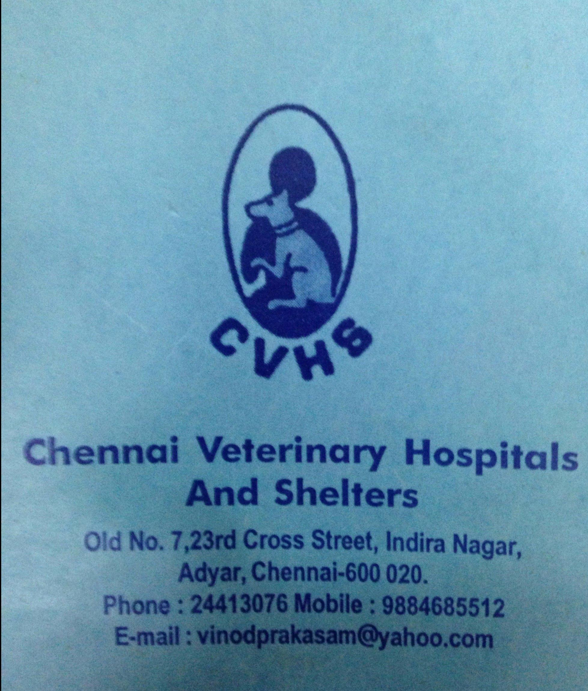Chennai Veterinary Hospitals and Shelters