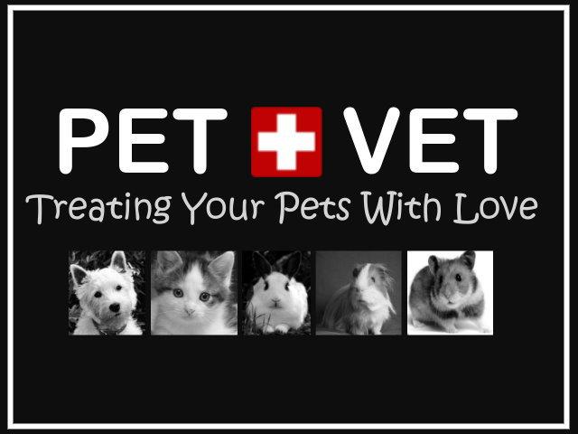 Pet + Vet