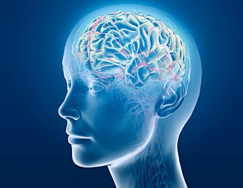 Bhargava Mind Clinic
