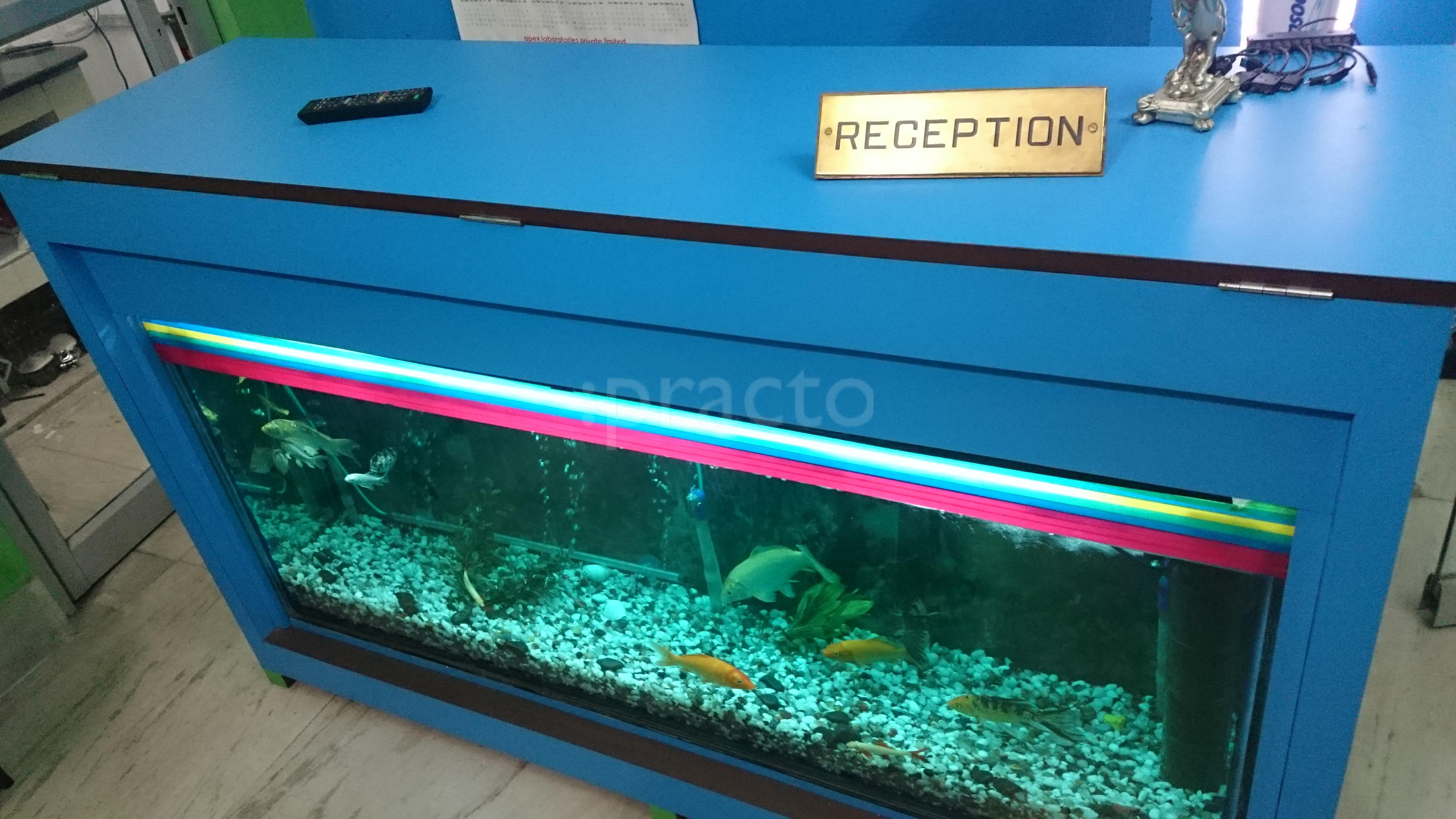 Fish aquarium in surat timings - Fish Aquarium In Surat Timings