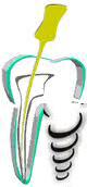 Dhingra Dental Clinic