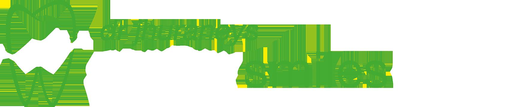 Dr. Jhuraneys Stellar Smiles Clinic