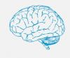 Om Neuro Clinic