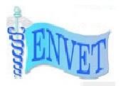 Envet