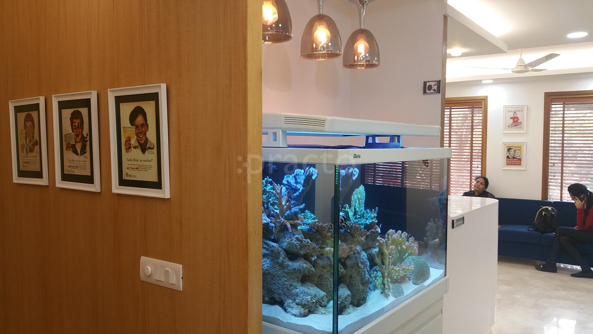 Fish Aquarium Rates In Delhi - Dentists in green park delhi instant appointment booking view fees feedbacks practo
