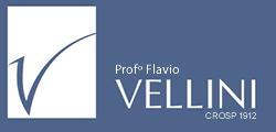 Instituto Vellini