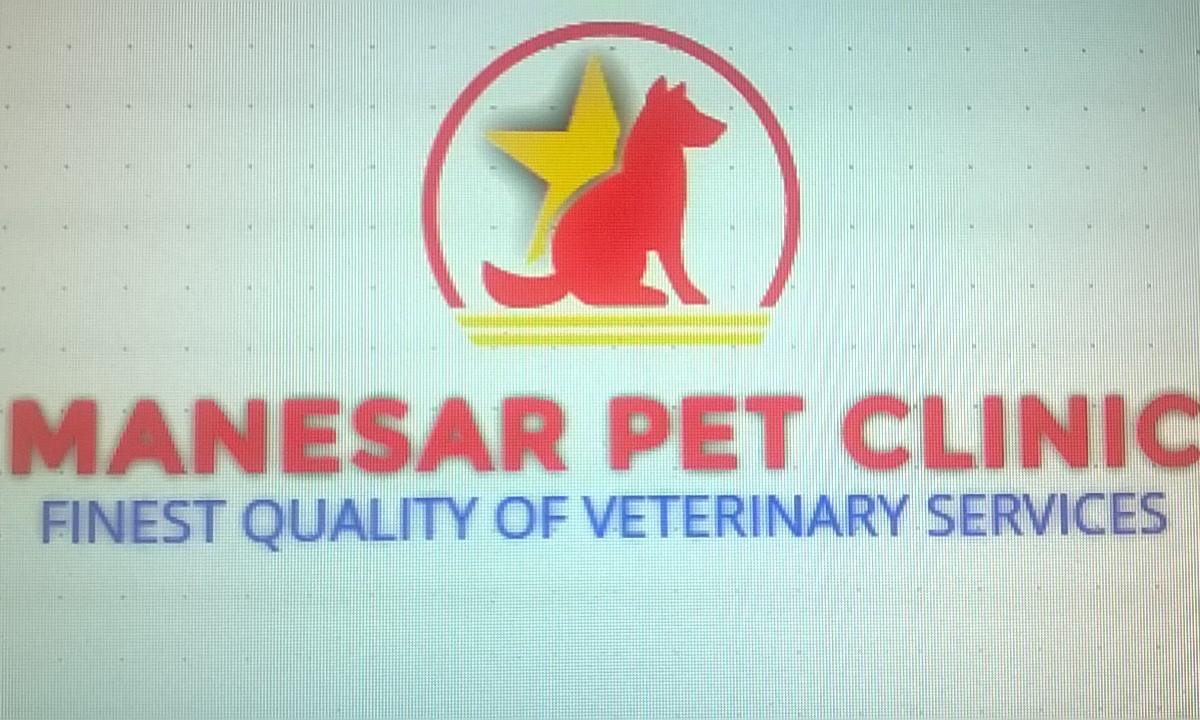 Manesar Pet Clinic