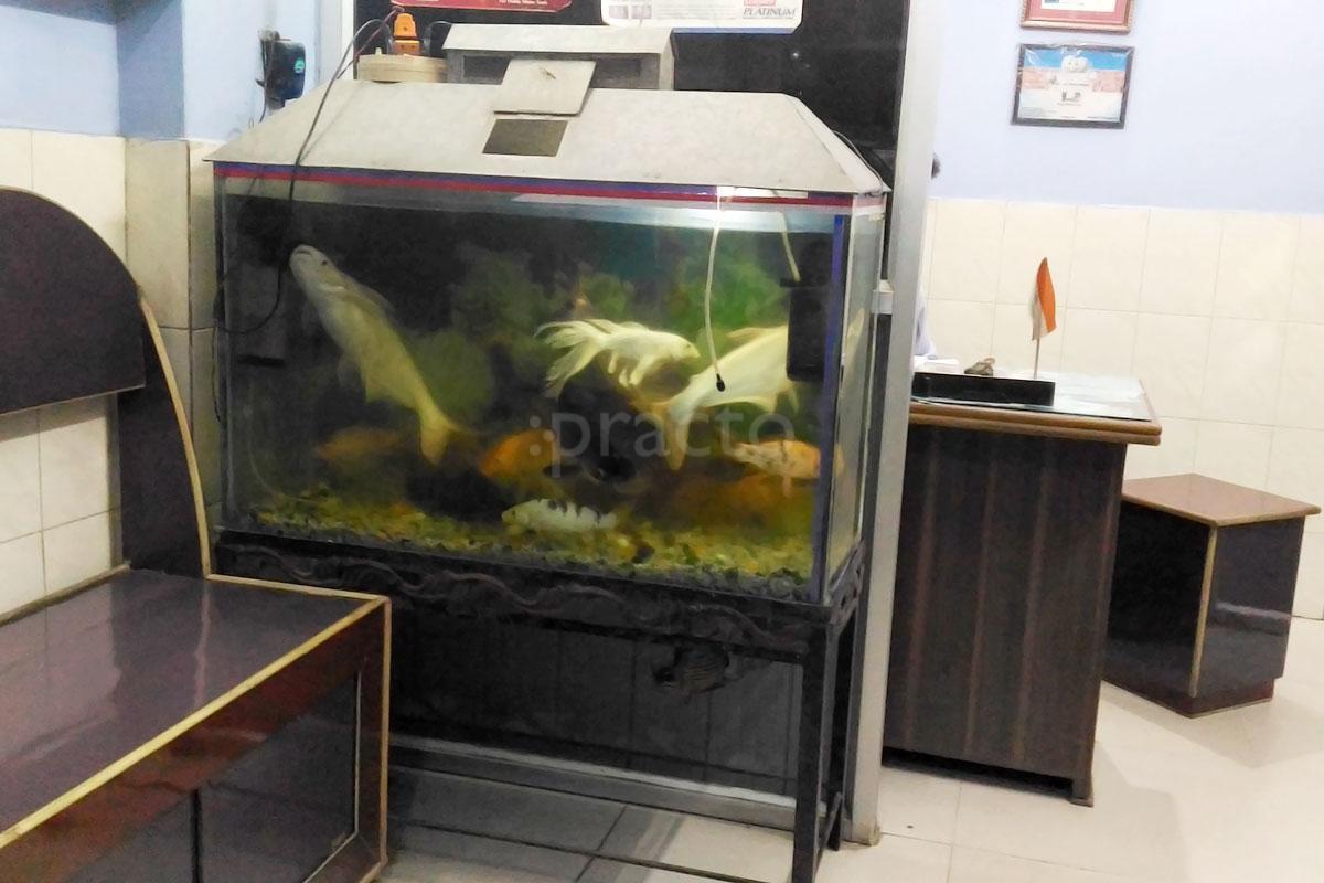 Fish aquarium in bhopal - Dr Ramesh Rastogi Book Appointment Online View Fees Feedbacks Practo