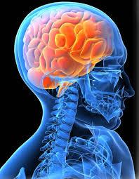 Neurointerventional Surgery & Vascular Intervention Clinic