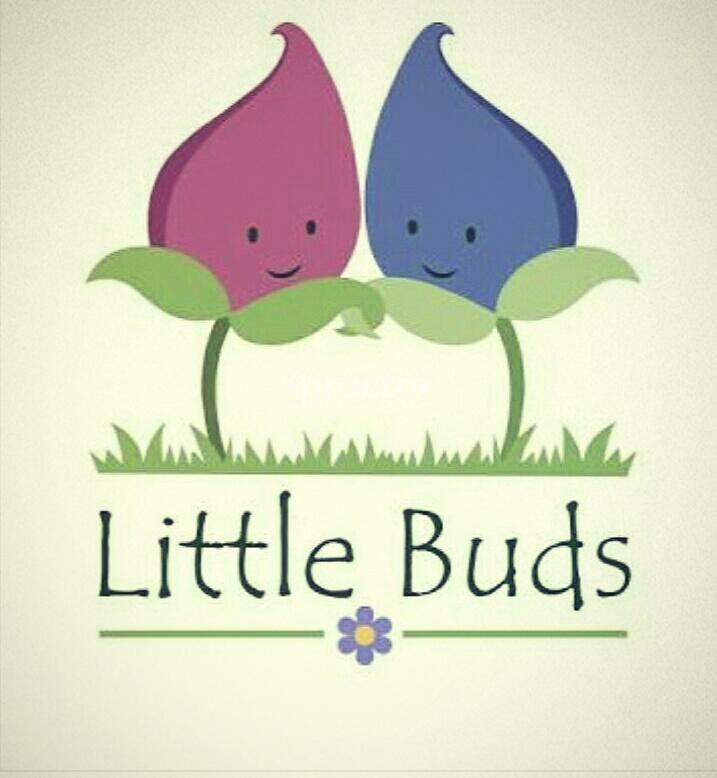 Little Buds Child Care Clinic