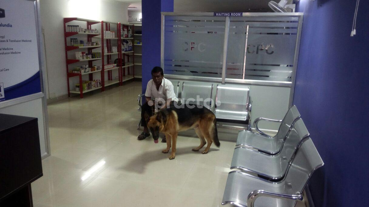 Veterinary Doctors In Hyderabad - Instant Appointment