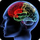 Trimurti Mind & Emotions Clinic