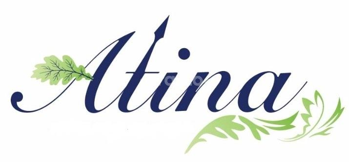 Atina Physiotherapy and Rehabilitation