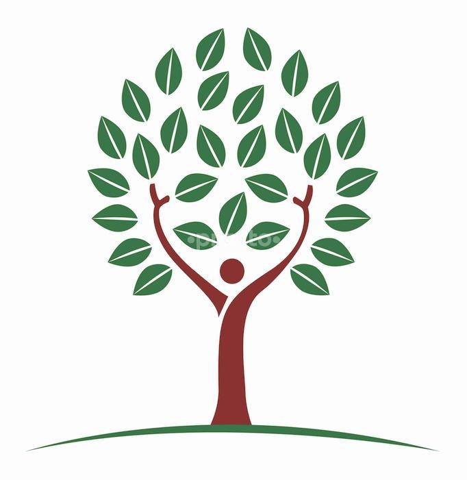 Lifetree Healthcare And  Diagnostics