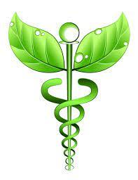 Balsam Homeopathy Clinic