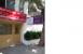 Manasi Clinic - Image 4