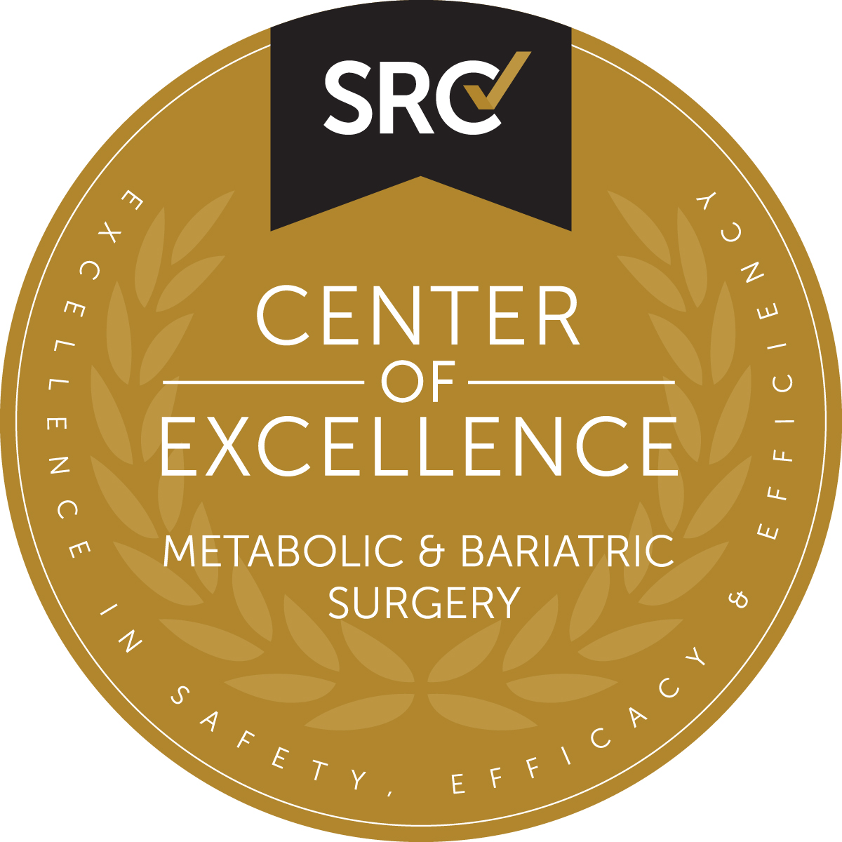 Centre For Metabolic Surgery