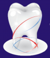 Sree Dental Clinic