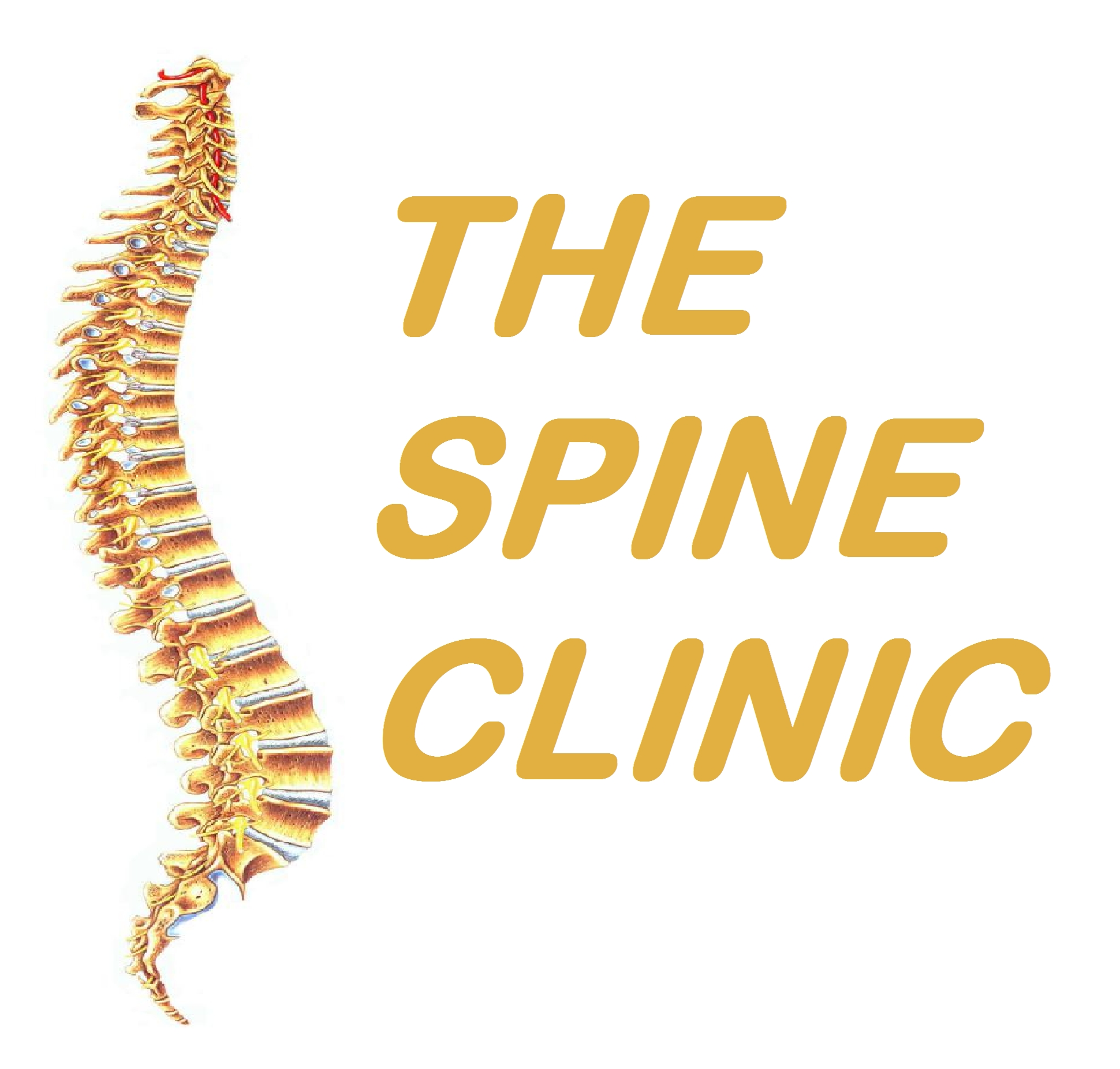The Spine Care Clinic